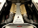 Lamborghini Diablo VT 6.0 SE 2001 pictures