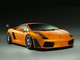 Lamborghini Gallardo GT3 2006–09 images