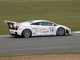 Lamborghini Gallardo GT3 2006–09 pictures