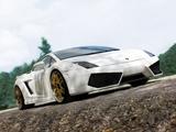 IMSA Lamborghini Gallardo LP560-4 2008 pictures