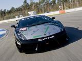 Lamborghini Gallardo LP 560-4 Super Trofeo 2009 photos