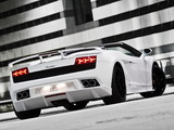 BF Performance Lamborghini Gallardo GT600 Spyder 2010 images