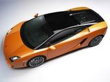 Lamborghini Gallardo LP 560-4 Bicolore 2011–12 photos