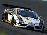 Reiter Lamborghini Gallardo GT3 FL2 2013 pictures