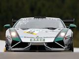 Photos of Reiter Lamborghini Gallardo GT3 FL2 2013