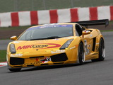 Lamborghini Gallardo GT3 2006–09 wallpapers
