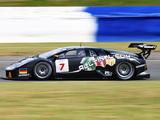 Lamborghini Murcielago R-GT 2003–06 pictures