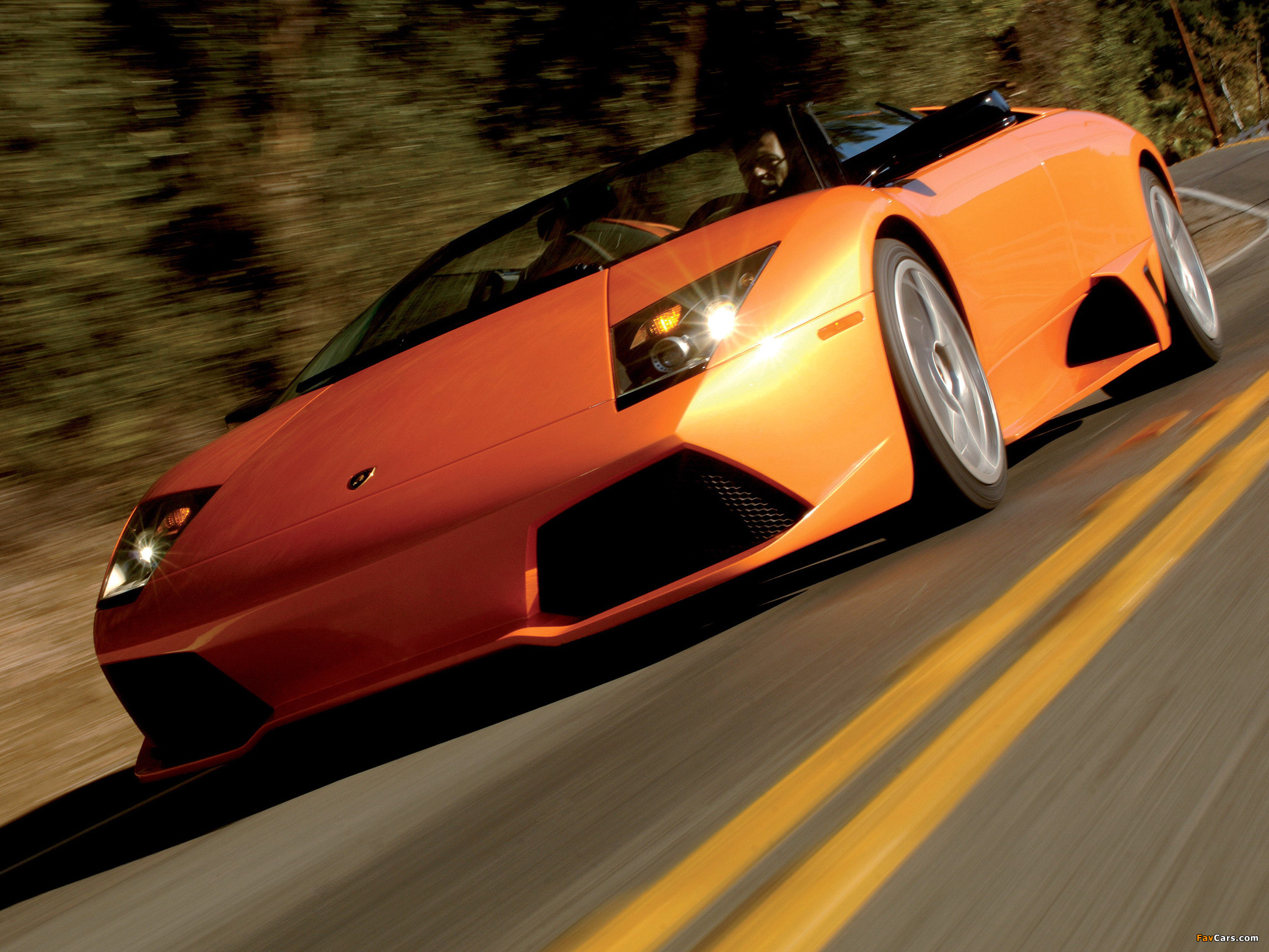 Photos of Lamborghini Murcielago LP640 Roadster 2006–10 (2048 x 1536)