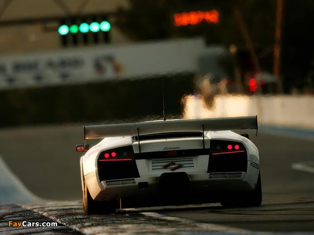Pictures of Lamborghini Murcielago R-GT 2003–06 (640 x 480)