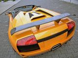 Pictures of IMSA Lamborghini Murcielago LP640 Roadster 2008