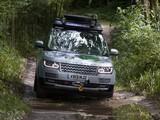 Images of Range Rover Hybrid Prototype (L405) 2013