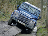 Land Rover Defender 110 Utility Wagon UK-spec 2009 photos