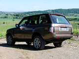 Pictures of Aznom Range Rover Spirito diVino (L322) 2011
