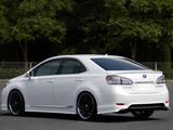 Images of Branew Lexus HS 250h 2009