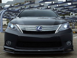 Wallpapers of Lexus HS 250h by VIP Auto Salon (ANF10) 2010