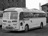 Images of Leyland Tiger Cub PSUC1-2 (C38F) 1961–