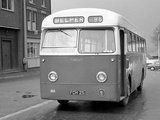 Photos of Leyland Tiger Cub PSUC1-1 (B44F) 1954–58