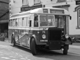 Images of Leyland Titan