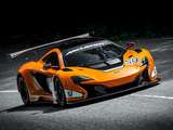 McLaren 650S GT3 2014 photos