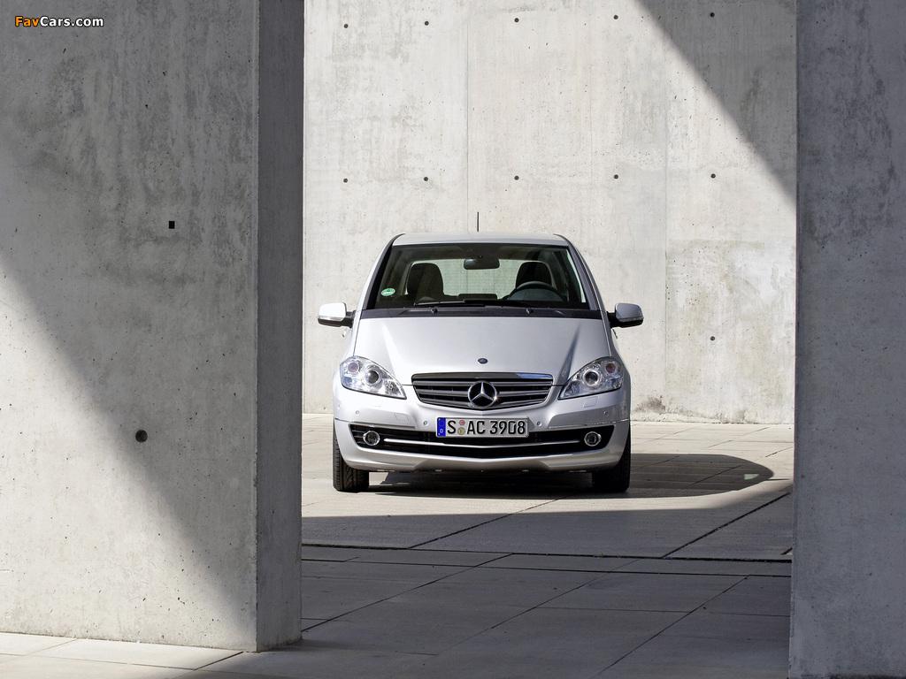 Mercedes-Benz A 170 5-door (W169) 2008 pictures (1024 x 768)