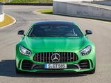 Mercedes-AMG GT R (C190) 2016 photos