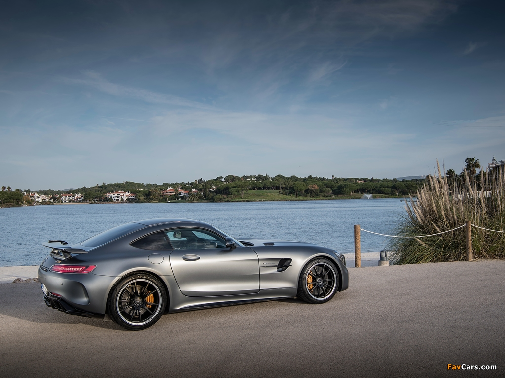 Pictures of Mercedes-AMG GT R (C190) 2016 (1024 x 768)