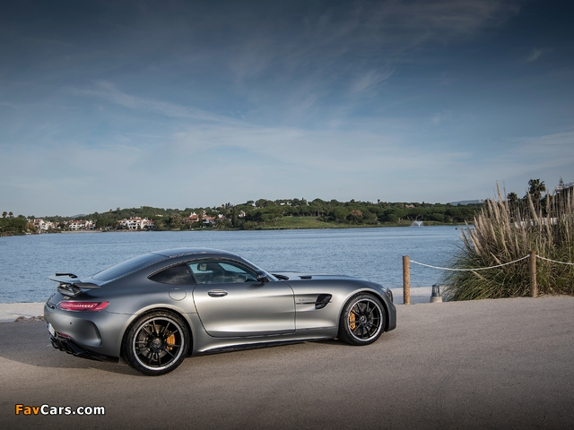 Pictures of Mercedes-AMG GT R (C190) 2016 (640 x 480)