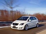 Images of Mercedes-Benz B 55 Prototype (W245) 2010