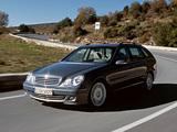 Mercedes-Benz C 200 CGI Estate (S203) 2001–07 images