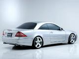 WALD Mercedes-Benz CL-Klasse (C215) 2002–06 pictures