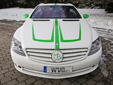 Photos of Wrap Works Mercedes-Benz CL 500 (C216) 2013