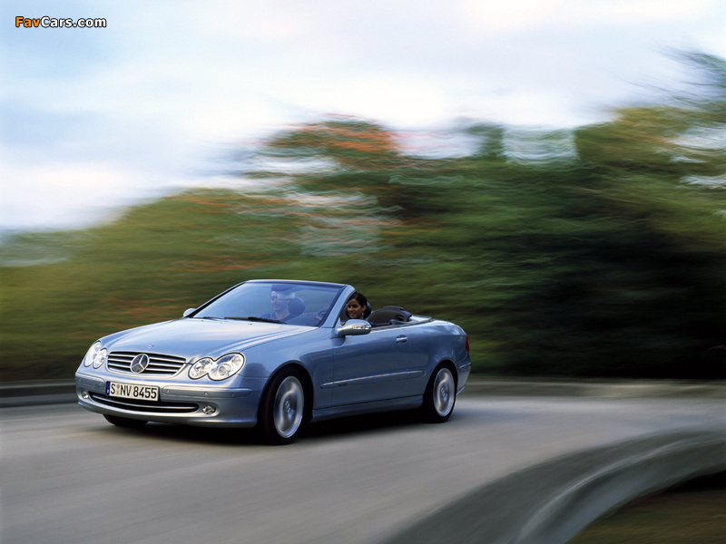 Images of Mercedes-Benz CLK 240 Cabrio (A209) 2003–05 (800 x 600)