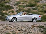 Images of Mercedes-Benz CLK 55 AMG Cabrio (A209) 2003–05