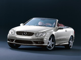 Images of Mercedes-Benz CLK 500 Cabrio by Giorgio Armani (A209) 2004