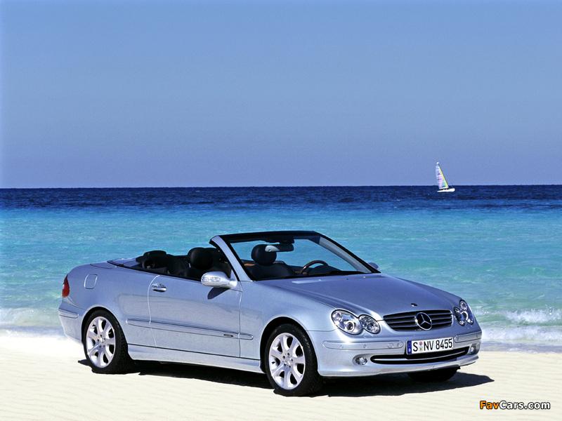 Mercedes-Benz CLK 240 Cabrio (A209) 2003–05 images (800 x 600)