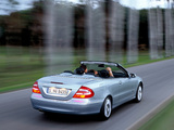 Mercedes-Benz CLK 240 Cabrio (A209) 2003–05 images