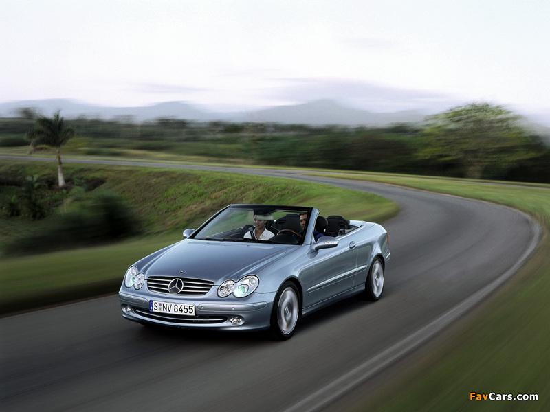 Mercedes-Benz CLK 240 Cabrio (A209) 2003–05 photos (800 x 600)