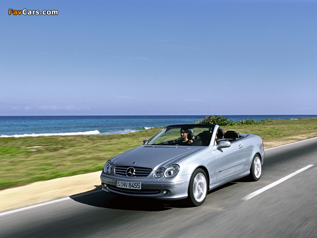 Mercedes-Benz CLK 240 Cabrio (A209) 2003–05 pictures (640 x 480)