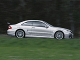 Mercedes-Benz CLK 55 AMG DTM Street Version (C209) 2004 wallpapers