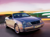 Photos of Mercedes-Benz CLK 55 AMG Cabrio (A208) 2000–02