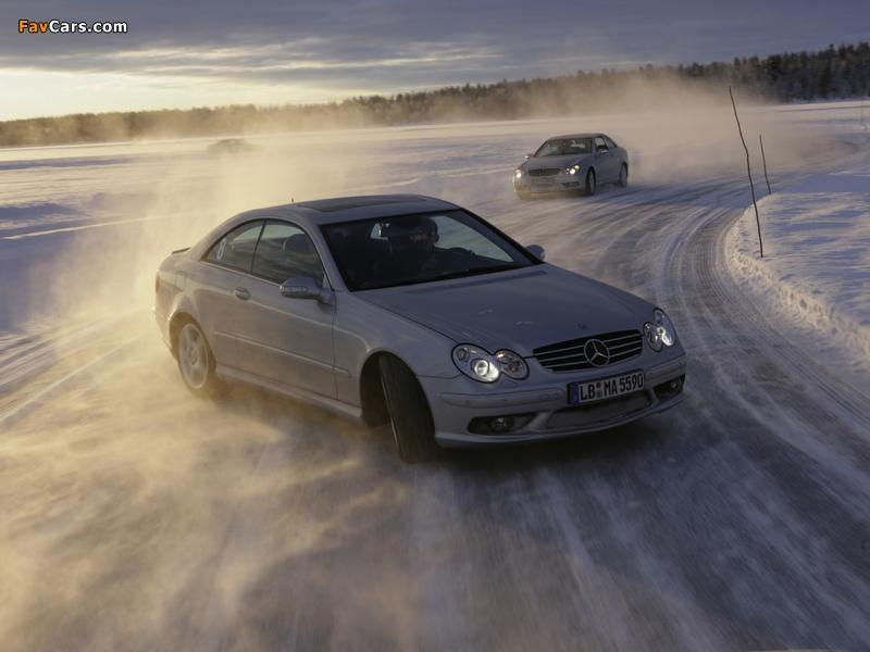 Photos of Mercedes-Benz CLK 55 AMG (C209) 2002–05 (800 x 600)