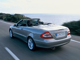 Photos of Mercedes-Benz CLK 500 Cabrio (A209) 2003–05