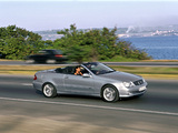 Pictures of Mercedes-Benz CLK 240 Cabrio (A209) 2003–05