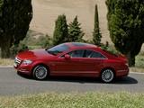 Images of Mercedes-Benz CLS 350 CDI (C218) 2010