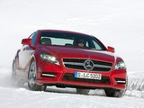 Mercedes-Benz CLS 350 CDI 4MATIC AMG Sports Package (C218) 2010 photos