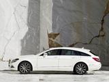 Mercedes-Benz CLS 250 CDI Shooting Brake (X218) 2012 photos