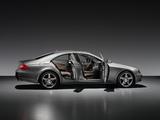 Photos of Mercedes-Benz CLS 350 CGI Grand Edition (C219) 2009