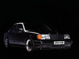 AMG 300 E 6.0 Hammer (W124) 1988–91 wallpapers