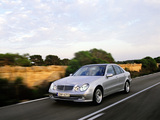 Wallpapers of Mercedes-Benz E 320 (W211) 2002–03