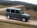 Mercedes-Benz G 350 BlueTec UK-spec (W463) 2010–12 photos